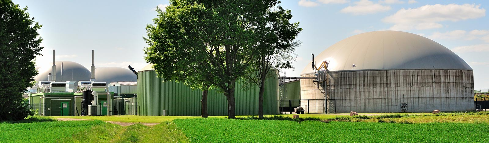 Anaerobic Digestion Foodstock